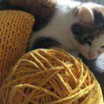 sznurek bawełniany